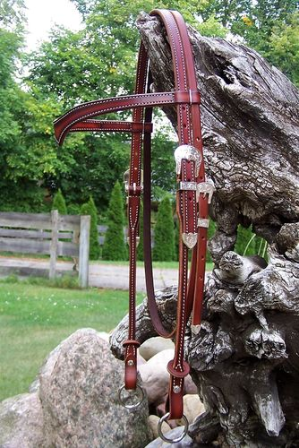 "Special Headstall ""Bright Foxtrotter"" in Colors"