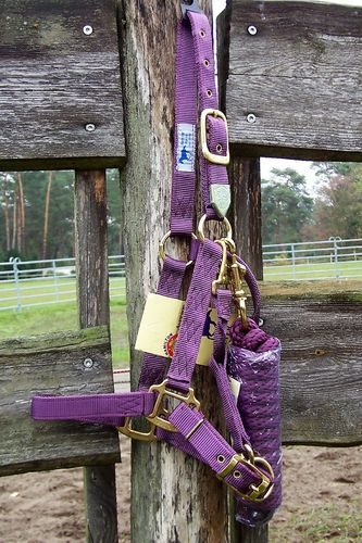 "Deluxe Hamilton Set Average ""Plum Purple"""